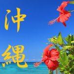 沖縄 海 紅い花